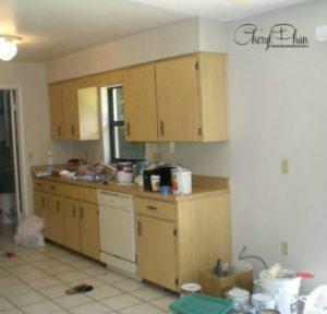Tina Kitchen before