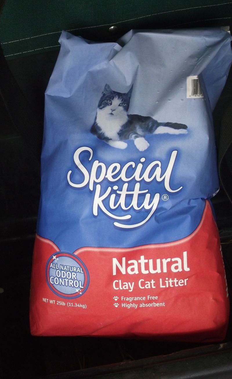 Kitty Litter. Where To Store Paint